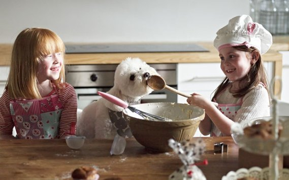 Baking is a great way to spend time with family. But it's best to keep your pooch away from the goodies. That means no spoon-licking for Fido!