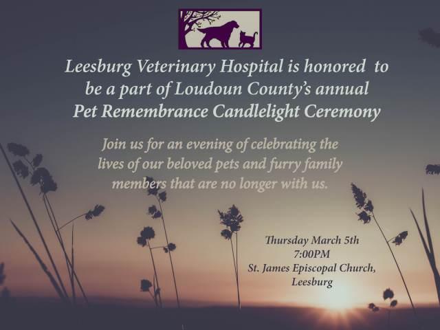 Pet Candlelight Ceremony- LVH web image