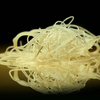 Up close and personal with heartworms. They look more like strands of spaghetti than actual worms. Image source: American Heartworm Society.