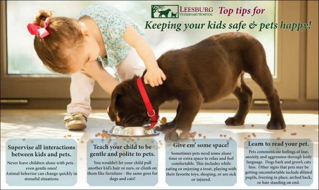 Keeping Kids Safe and Pets Healthy_Infographic.jpg