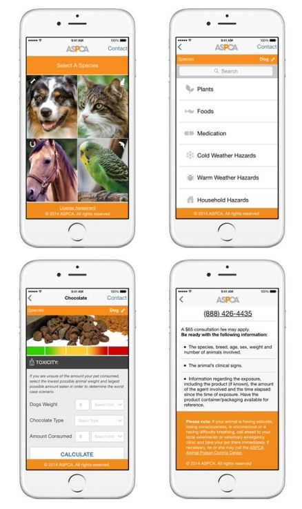 Pet Toxins Animal Poison Prevention Week ASPCA Poison Control Center App