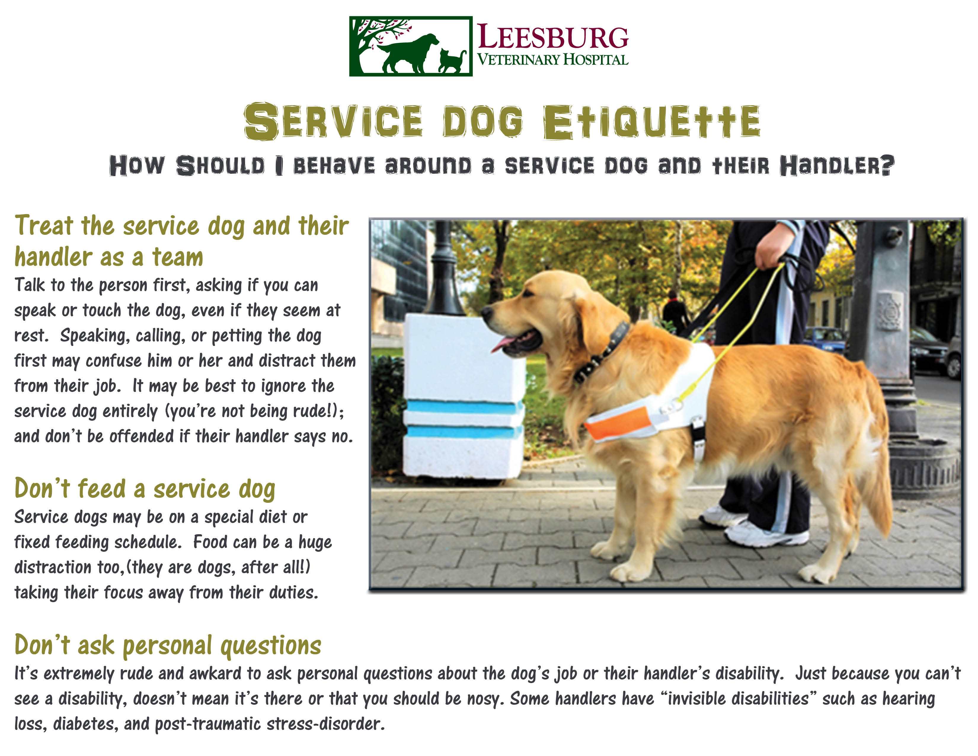 service animals A service animal must be specifically trained to perform a service function no national standards for certification or licensure of service animals service animals whose behavior poses a direct threat to the health or safety of others, or is disruptive to the campus community, may be excluded regardless of training or certification.