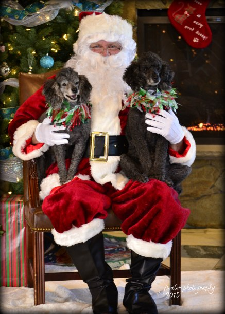 14. Yvette and Desiree Lindberg Santa Paws 2015