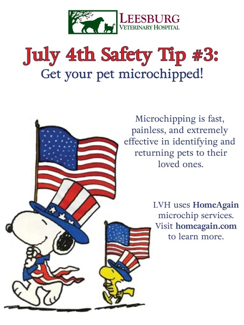 July Fourth Safety Tips