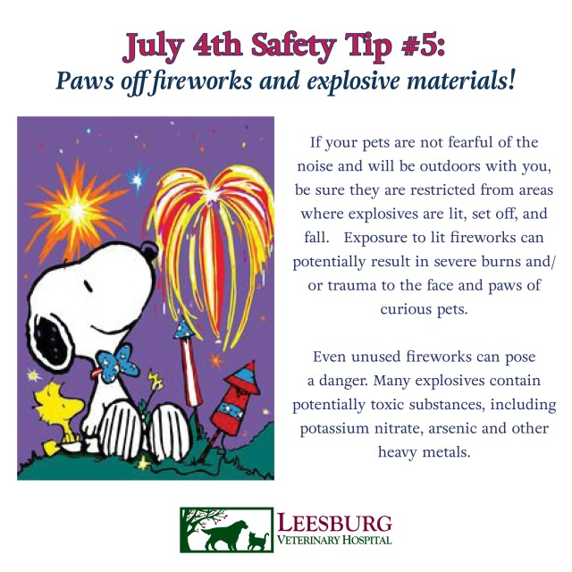 July Fourth Pet Safety Tips