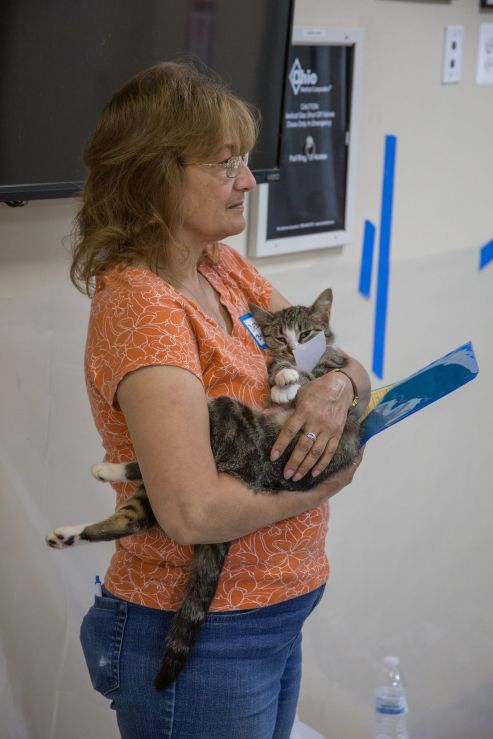 Loudoun Community Cat Coalition - TNR Clinic