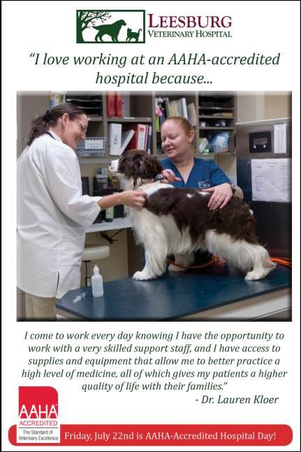 AAHA Day - Leesburg Veterinary Hospital