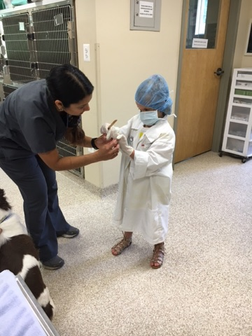 Leesburg Veterinary Hospital - Future Vet