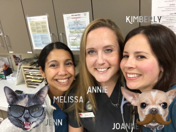 National Veterinary Technician Week Leesburg Veterinary Hospital