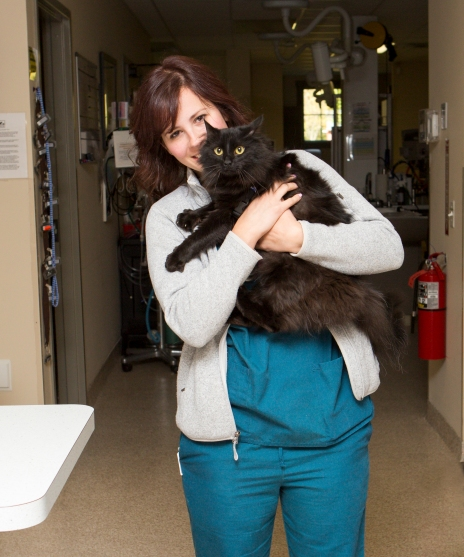 Leesburg Veterinary Hospital - Kimberly Shaffer