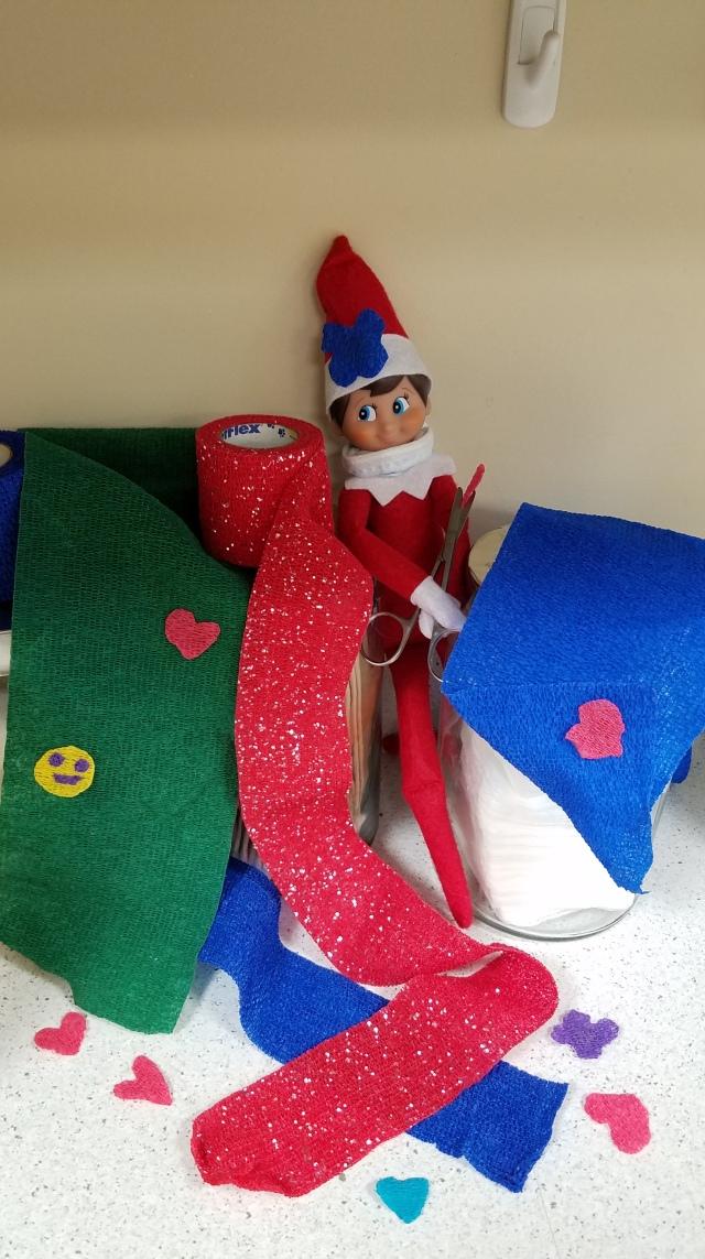 Elf on the Shelf - pets - Leesburg Veterinary Hospital