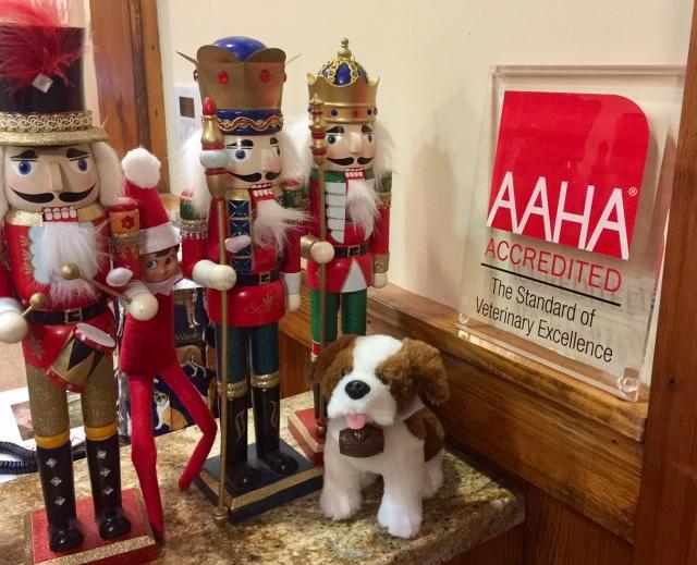 Elf on the Shelf - Leesburg Veterinary Hospital