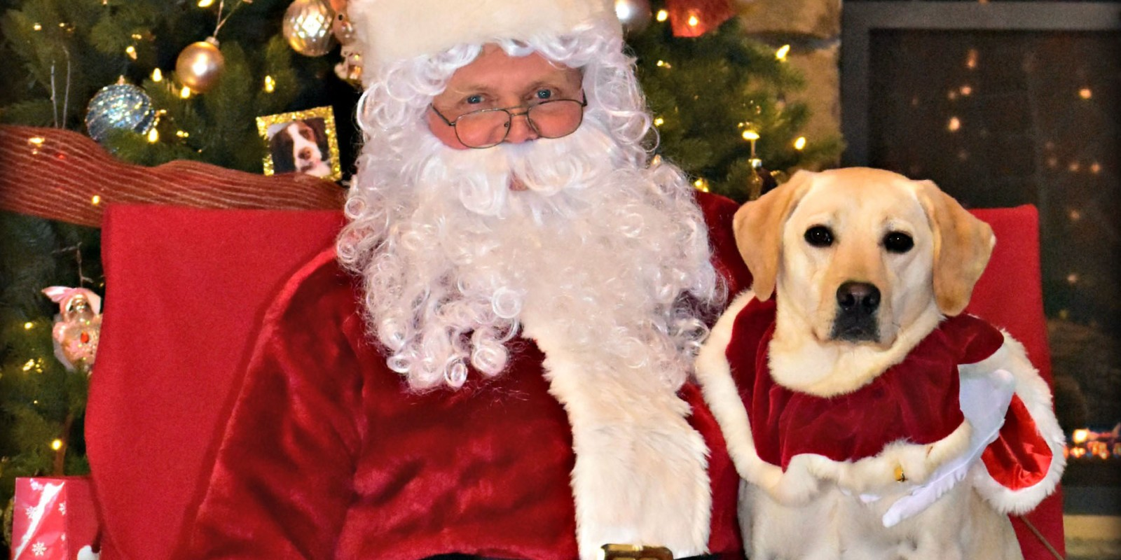 Pet Pictures with Santa- Leesburg Veterinary Hospital