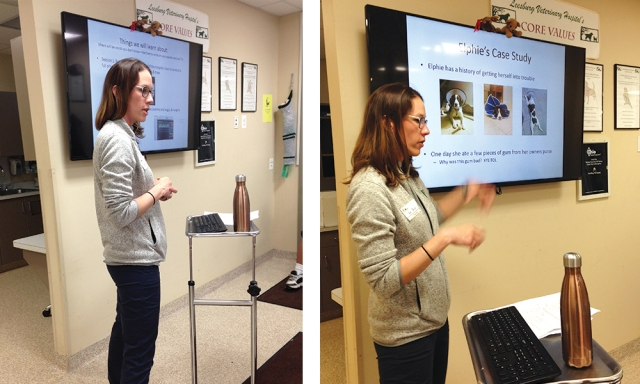 Dr. Jennifer Boyle Leesburg Veterinary Hospital Vet Med Course
