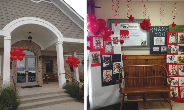 Leesburg Veterinary Hospital - Red Nose Day