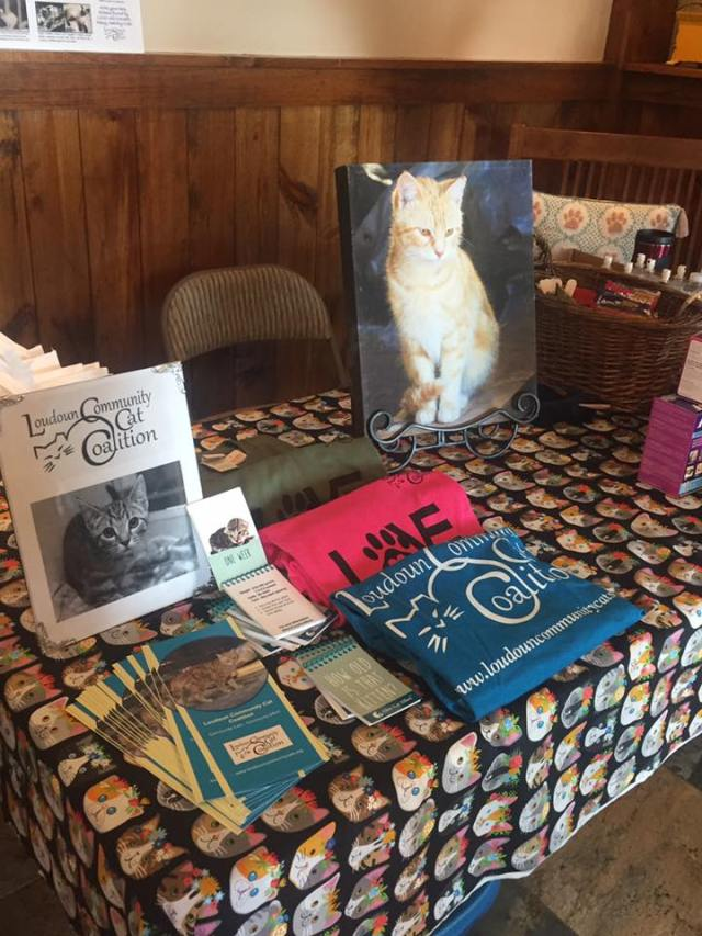 Loudoun Community Cat Coalition Fundraiser Leesburg Veterinary Hospital