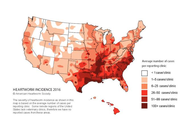 Heartworm Incidence Map 2016 American Heartworm Society