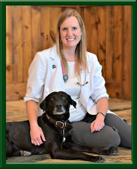 Leesburg Veterinary Hospital